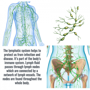 Lymphatic Drainage