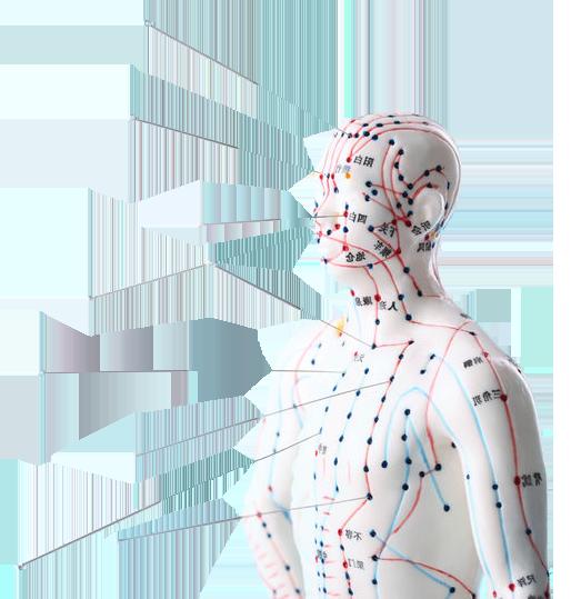 Acupuncture-9